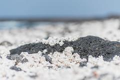 Popcorn Beach (BoomShakalaka86) Tags: 200mm nikon fuerteventura nature d500 natur orte nikkor 5502000mm objektiv 55mm