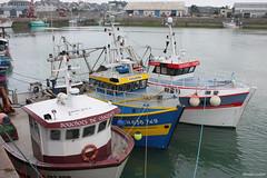 Dans le port de Granville (philippeguillot21) Tags: port harbour granville manche cotentin normandie france europe pixelistes canon