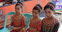 INDONESIEN, Sulawesi - Traditionelle Totenfeier der Toraja bei Makale, 17642/10653 (roba66) Tags: sulawesi urlaub reisen travel explore voyages rundreise visit tourism roba66 asien asia indonesien indonesia insel celebes island île insulaire isla toraja tanahtoraja volk brauchtum tradition «torayavillage» ahnenkult mythen beerdigungsriten riten beerdigung bestattung funeral puya zeremonieplatz totenfeier opfer wasserbüffel schweine pigs buffalo feier mädchen girl kinder child children fest kleidung cloth woman women frauen lady