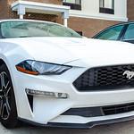 Convertible Mustang thumbnail