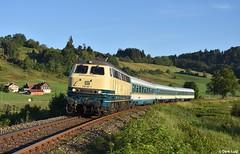 Railsystems RP 218 447, Blaichach, 12-8-2018 7:18 (Derquinho) Tags: railsystems rp 218 447 bunny v160 v 160 blaichach immenstadt allgäu alex die länderbahn netinera alx 79651 kempten münchen oberstdorf bayern bavaria