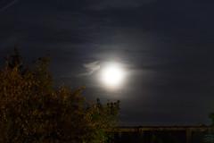Moon vs. Saturn / @ 55 mm / 2018-09-17 (astrofreak81) Tags: saturn moon luna mond planet stars tree light night sky dark konjunktion konstellation dresden 20180917 sylviomüller sylvio müller astrofreak81