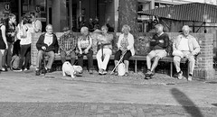 Who was on the bench 19 Sept 2018 (sasastro) Tags: candid streetphotography peoplewatching benchseries burystedmundsbench marketday mono burystedmunds