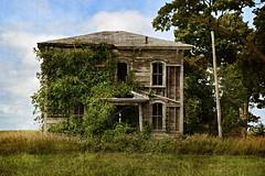 fallen arches (David Sebben) Tags: fallen arches abandoned farmhouse warren illinois windows overgrowth