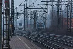 001_2018_03_22_Hamburg_Harburg_6187_311_Rpool_1216_910_LTE (ruhrpott.sprinter) Tags: ruhrpott sprinter deutschland germany allmangne nrw ruhrgebiet gelsenkirchen lokomotive locomotives eisenbahn railroad rail zug train reisezug passenger güter cargo freight fret hamburg harburg boxx brll ctd db dispo egp ell eloc hctor locon lte me mteg nrail öbb pkpc press rhc sbbc slg vps wiebe wlc 1203 1214 1216 1223 3294 4180 5370 5401 6101 6110 6143 6146 6152 6182 6186 6187 6193 es64u2 logo natur graffiti
