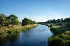 River Nene from Milton Ferry Bridge - Nene Park, Peterborough, UK (Nature21290) Tags: july2018 nenepark peterborough rivernene uk