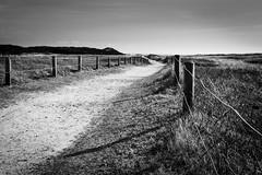 long way (HiMortl) Tags: way path weg pfad strand beach landschaft landscape blackandwhite monochrome schwarzweis zaun fence sony sonyilce6500 alpha 6500 apsc sigma 1835mmf18dc