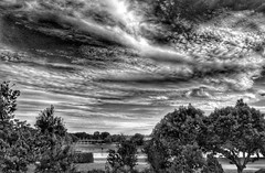 A stunning skyscape! B+W😀 (LeanneHall3 :-)) Tags: blackandwhite mono sky skyscape clouds cloudsstormssunsetssunrises trees branches leaves grass lake windmill eastpark hull kingstonuponhull landscape canon 1300d groupenuagesetciel