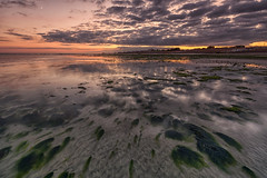 From the shallows (Through Bri`s Lens) Tags: sussex worthing sunset shallows seaweed lowtidereflection brianspicer leefilters canon5dmk3 canon1635f4 wide angle