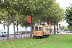STCP 205--2018_09_17_0786 (phi5104) Tags: trams porto stcp 2018