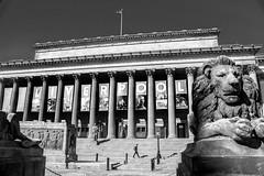 Where am I? (Tony Shertila) Tags: england liverpool architecture britain building europe facade hall limestreet lion merseyside pillar stgeorgeshall ©2018tonysherratt 20180905113612liverpoollr