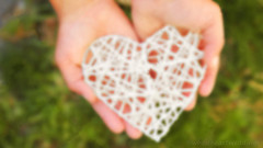 (wholeheartweddings) Tags: heart hands red holding love giving woman care shape life healthy human day health valentine protection donate glass women peace concept holiday gift image support sign hold warm studio female happiness new healthcare hand work energy wood charity horizontal save