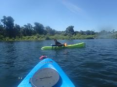 P6300355 (MFTMON) Tags: dale mftmon dalemorton riverrafting americanriver sacramento california river rafting nature