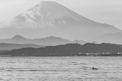 富士山|Fujisan (里卡豆) Tags: fujisawashi kanagawaken 日本 jp olympus 40150mm f28 pro olympus40150mmf28pro japan kanto tokyo 富士山 em10markiii