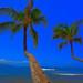 Panorama 1_easyHDR LUM 1