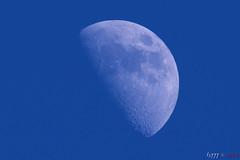 Blue Moon (fs999) Tags: 100iso fs999 fschneider aficionados zinzins pentaxist pentaxian pentax k1 pentaxk1 fullframe justpentax flickrlovers ashotadayorso topqualityimage topqualityimageonly artcafe pentaxart corel paintshop paintshoppro 2018ultimate paintshoppro2018ultimate lune moon mond luna mound hdpentaxda560mmf56edaw da560 hdda dc 560mm f56