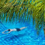 Swimmer thumbnail
