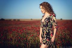 Alba - 4/5 (Pogdorica) Tags: modelo sesion retrato posado campo amapolas chica alba rojo flores