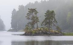 Sumujen saaret, Foggy islands (G10A4081LR) (pohjoma) Tags: luoto canoneos7dmarkii canonef100400mmf4556lisiiusm finland fog mist lake island water rock kallio järvi vesi sumu saari usva tree pine forest puu mänty metsä syksy autumn fall
