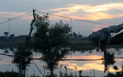 delhi outskirts sunset (kexi) Tags: delhi india asia sunset evening sky clouds wires silhouettes dark water reflection canon february 2017 outskirts