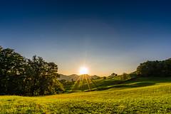 Sun flooded (UpuautX) Tags: sony a7iii 1635mm f16 sonnenaufgang sunrise zeglingen baselland morgen morning