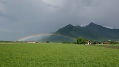 Regenbogen Schnappenberg Hochlerch (Aah-Yeah) Tags: regenbogen rainbow aschafeld schnappenberg luchsfallwand marquartstein achental chiemgau bayern