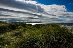 261 ~ 365 (BGDL) Tags: lightroomcc nikond7000 bgdl landscape no6365~2018 nikkor18105mm3556g seascape prestwick dunes landseaandair