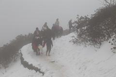 IMG_3927 (Beautiful Creation) Tags: india bagdogra darjeeling pelling yuksom gangtok lachen chopta valley lachung