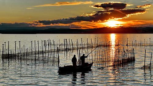 Fishing at twilight