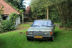 1983 Mercedes Benz 230E (W123) (Davydutchy) Tags: nijhoarne nieuwehorne fryslân friesland frisia frise nederland netherlands niederlande paysbas mercedesbenz mercedes benz 230e 230 w123 auto automobiel automobile car voiture vehicle bil avto pkw sedan limousine september 2018