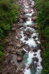 Thundering Rathong Chu (abhishek.verma55) Tags: rathongchu rathongriver himalaya yuksom travel incredibleindia landscape flow ©abhishekverma motion photography flickr mountain rock rocky landscapes beautifulnature beautiful river creek beauty nature sikkim westsikkim scenic scene scenery view topview stream rocks mountains mountainside himalayas evening greenery water greens green india khangchendzonganationalpark trees tree milky white waterfront thunderous colour colourful colorful colours colors outdoor outdoors outside ngc