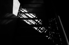 Lights and shadows on the staircase (Alfredo Liverani) Tags: 7dayswithflickr 7dwf bw canong5x canon g5x pointandshoot point shoot ps flickrdigital flickr digital camera cameras 2352018 project365235 project365082318 project36523aug18 oneaday photoaday pictureaday project365 project project2018 2018pad
