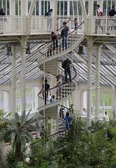 Staircase - Temperate House (stephenmid) Tags: kew royalbotanicgardenskew