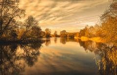 Return to Pallington lake (10000 wishes) Tags: lake water sunset dusk naturephotography trees silhouette sun reflections beauty beautifulsky outdoors landscape
