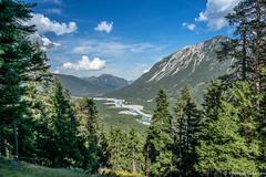 DSC_5050 (michael.tschiderer) Tags: heimat blumen tschiderer michael lechtal natur tirol ausserfern reutte weisenabch am lech tiere gras berg himmel landschaft schnee abhang landstrase