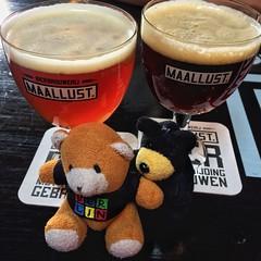 Beer en Beerin hebben weekeindverlof (Harry -[ The Travel ]- Marmot) Tags: allrightsreservedcontactmebyflickrmail veenhuizen maallust bier beer beerin