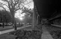 Pôr-do-Sol (caco.carvalho) Tags: fau fauusp bw pôrdosol sunset