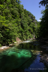 Vintgar Gorge (Sylviane Moss) Tags: vintgargorge slovenia water bled radovnariver
