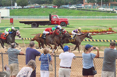 "2018-08-31 (87) r7 Johna Rosado on #6 Runaway Bull for his 2nd win (JLeeFleenor) Tags: photos photography maryland marylandracing timonium mdstatefair fair horseracing outside outdoors jockey جُوكِي ""赛马骑师"" jinete ""競馬騎手"" dżokej jocheu คนขี่ม้าแข่ง jóquei žokej kilparatsastaja rennreiter fantino ""경마 기수"" жокей jokey người horses thoroughbreds equine equestrian cheval cavalo cavallo cavall caballo pferd paard perd hevonen hest hestur cal kon konj beygir capall ceffyl cuddy yarraman faras alogo soos kuda uma pfeerd koin حصان кон 马 häst άλογο סוס घोड़ा 馬 koń лошадь"