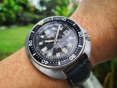 Seiko 6105-8110 on the wrist (stratman² (2 many pix!)) Tags: androidphotography huaweimate10 alpl29 seikowatches 61058110 vintage diverswatch suwa horology timepiece 6105 automatic wristwatch mechanicalwatches