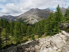 2018-09-16_9161769 © Sylvain Collet_DxO.jpg (sylvain.collet) Tags: mountains alpesdehauteprovence france wild montagne colmarslesalpes lacdallos nature