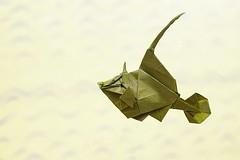 Thread-sail filefish (Takuro Kashiwamura) (De Rode Olifant - off) Tags: origami marjansmeijsters origamifish takurokashiwamura threadsailfilefish 3d paperart paper papiroflexia diagrams fish