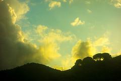 20171031-295 (sulamith.sallmann) Tags: landschaft wetter abend abends clouds evening himmel italia italien italy natur sicilia sizilien sky weather wolken sulamithsallmann morgen morgens early