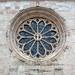Trento (TN), 2018, Il Duomo e particolari. Il rosone.