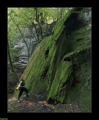 En haut de la Cascade du Défois - Saules (francky25) Tags: en haut de la cascade du défois saules franchecomté doubs explo aventure