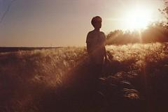 burnt sugar (vse.svetloe) Tags: 35mm film naturallight nofilter analog nikonfg20 sun summer boy lomo vsesvetloe feathergrass