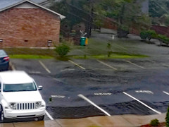 Parking Lot Flooding. (dccradio) Tags: lumberton nc northcarolina robesoncounty outdoor outdoors outside nature storm stormy weather hurricane florence hurricaneflorence tree trees foliage september earlyfall earlyautumn latesummer rain raining rainy jeep suv paved pavement parking parkinglot water standingwater flood flooding bodyofwater brick bricks brickbuilding apartment apartmentbuilding recyclebin trashbin trashcan samsung galaxy smj727v j7v cellphone cellphonepicture sidewalk concrete cement