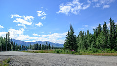 To Denali (shirley319) Tags: 2018 alaska changfamily d600 denali july parkshighway clbmak18 landscape mountains roadtodenali travel vacation cantwell unitedstates us