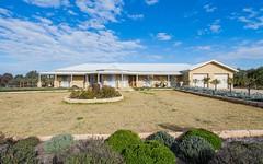 7 Mirbelia Drive, Springvale NSW