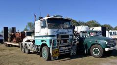 Mack (quarterdeck888) Tags: trucks photos truckphotos australiantrucks outbacktrucks workingtrucks primemover class8 overtheroad interstate frosty quarterdeck jerilderietrucks jerilderietruckphotos flickr bdoubles lorry bigrig highwaytrucks interstatetrucks nikon truck claredontruckshow clariontruckshow2018 truckshow australiantruckshows kenworthclassic oldtrucks oldaustraliantrucks australiantransporthistory mack mackcruiseliner